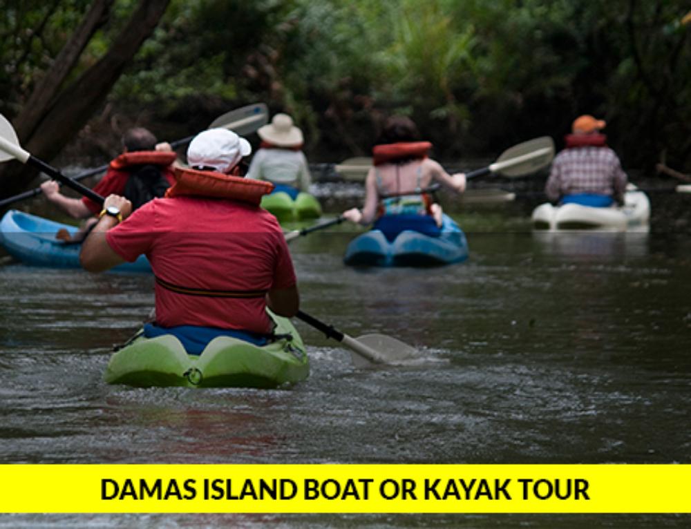 Damas Island Boat or Kayak Tour